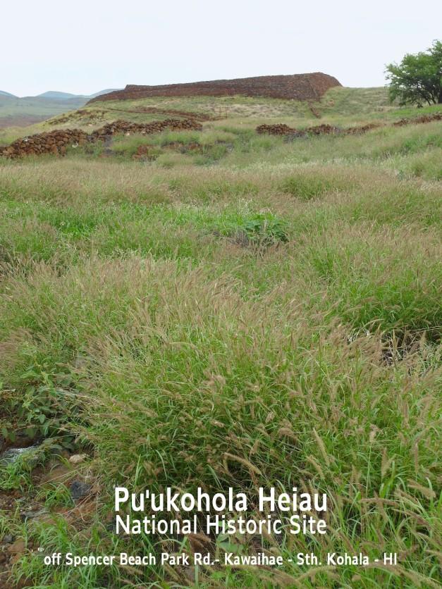 Pu'ukoholaHeiau-7