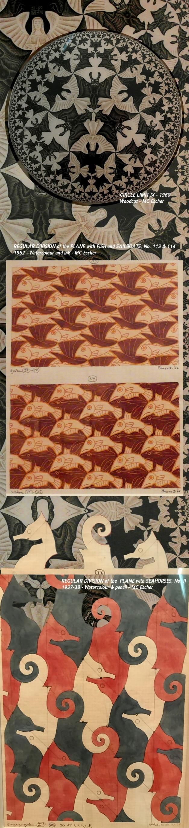 Mc Escher Tessellations Seahorse