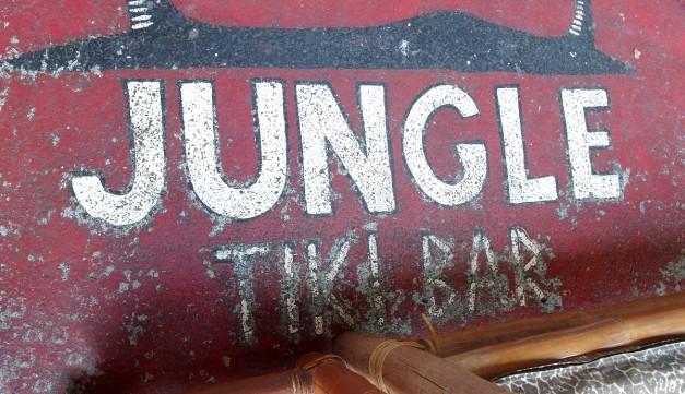 Jungle-26