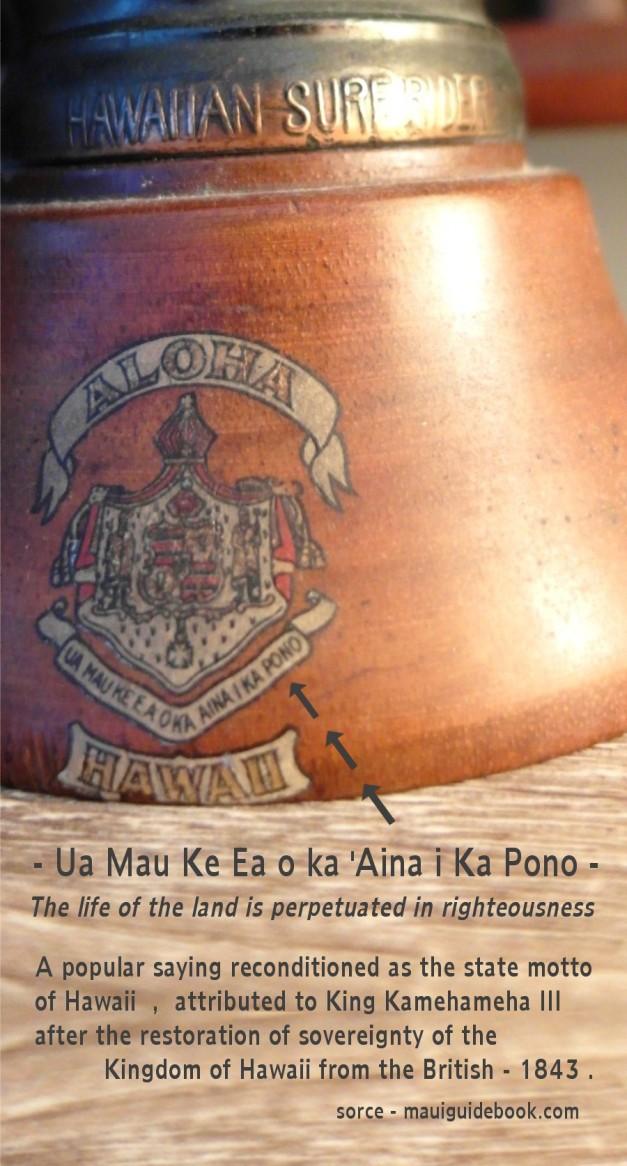 HawaiianSurfrider-33
