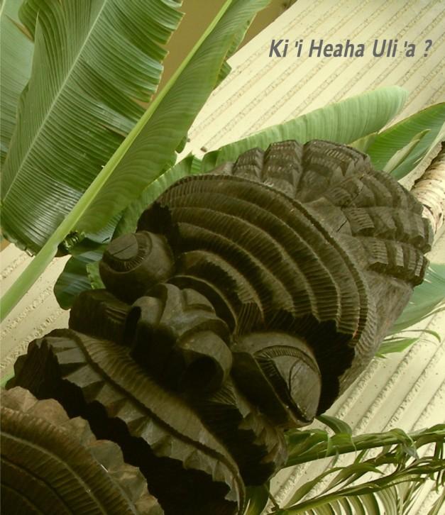 Ki'iHHvillage-9