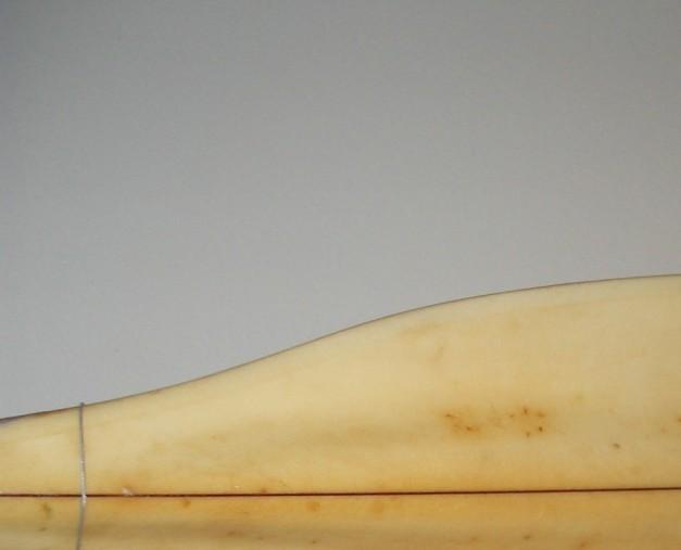 Earl'sEagle-4
