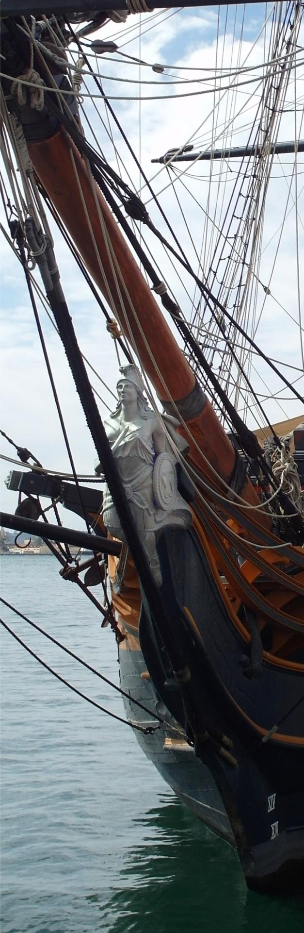 FigHea:HMSsuprise-13
