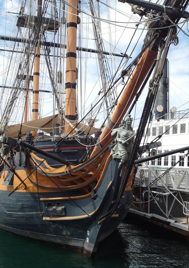 FigHea:HMSsuprise-6