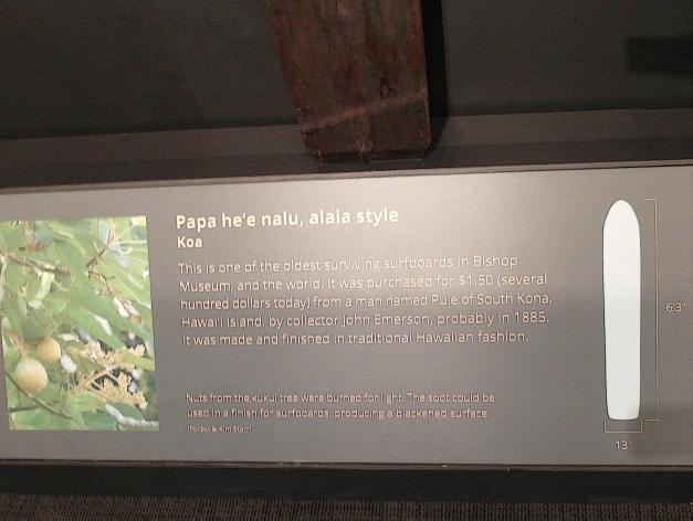 Alaia-6'3-2b